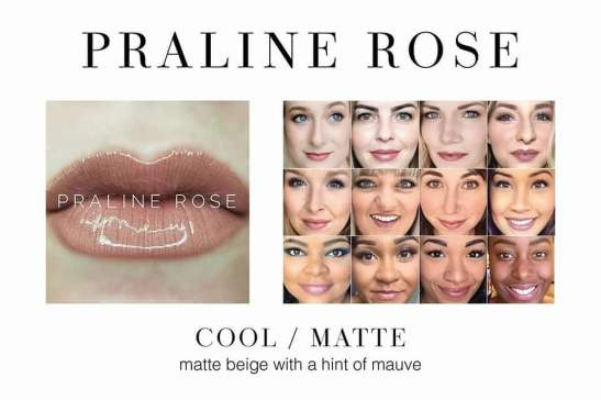 Praline Rose - In stock now Distributor ID 334027