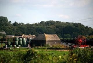 Ezt benőtte a holland mezőgazdaság