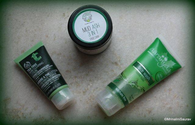Skincare Routine Aaranyaa The Body Shop Greenberry Organics Mud Ash