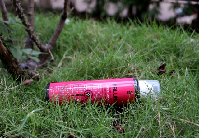 BBlunt Back To Life Dry Shampoo - Spring Fling | Review