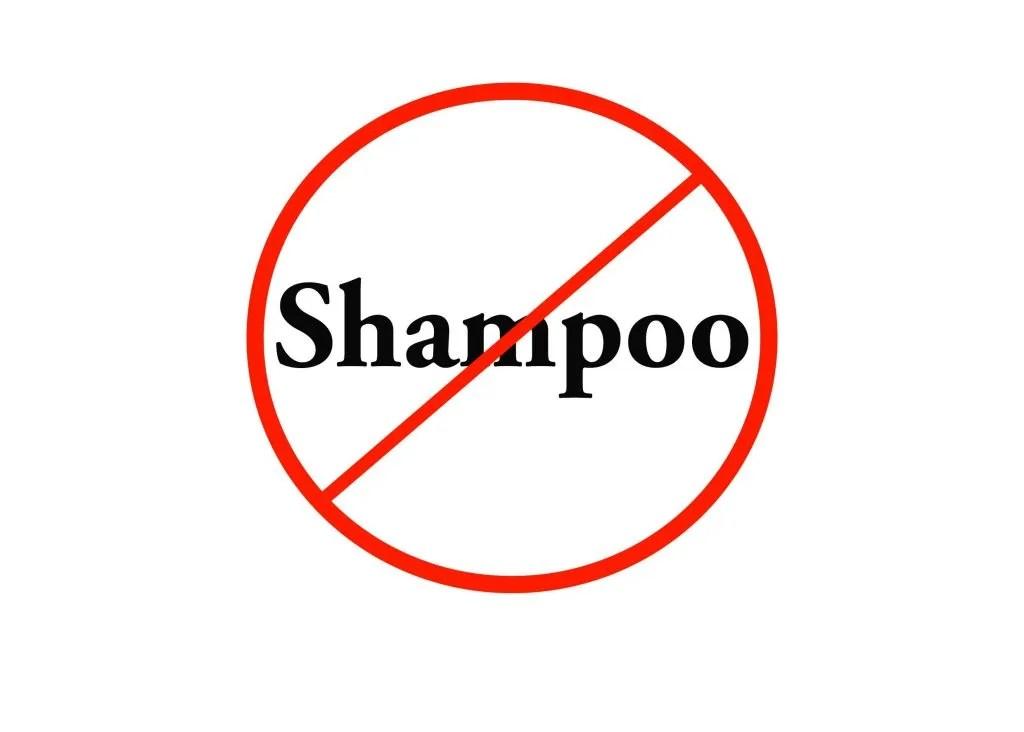 No shampoo