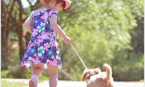 子供、犬、夏、散歩