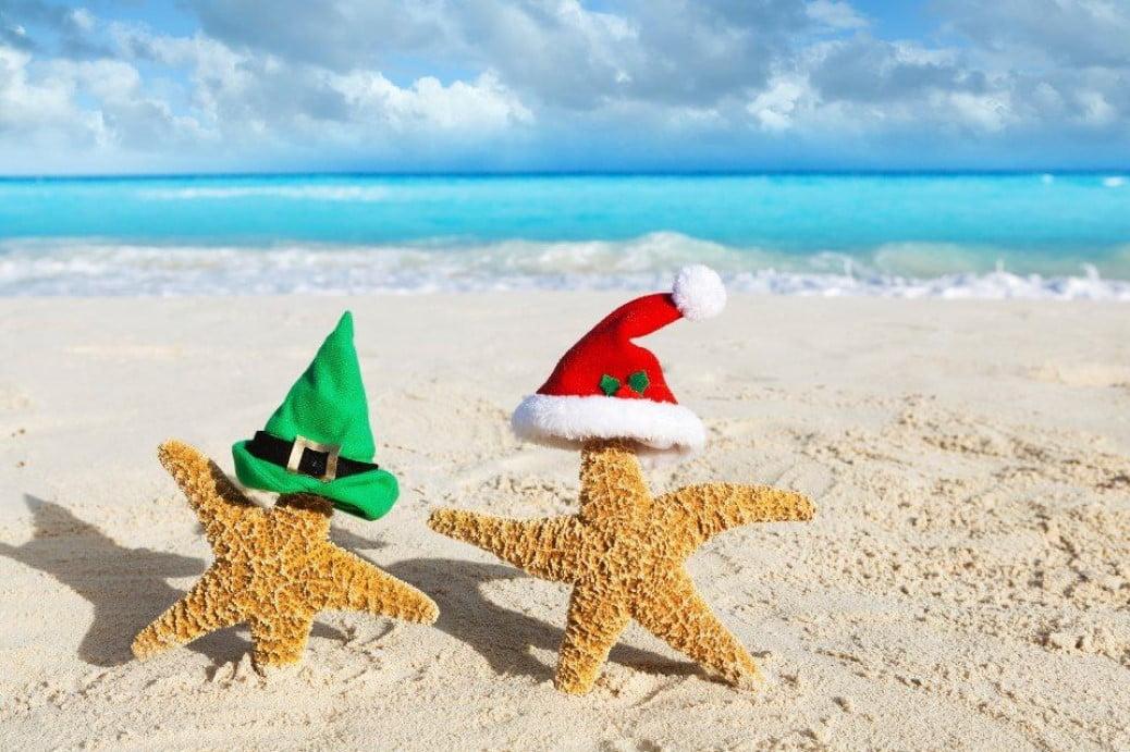 2019 Recap, Merry Christmas & Happy Holiday!