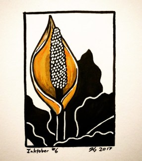 #6 – Skunk Cabbage
