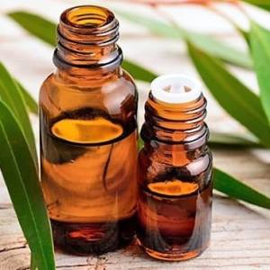 Aceite Esencial de Eucalipto Liquids Chemical