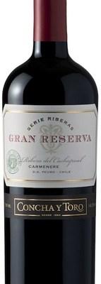 Gran_Reserva_Carmenere_Bottle__92021.1493483312.380.500
