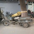 כלי רכב, בייג'ין