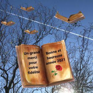 Lire pour guérir - copyright Nathalie Cailteux