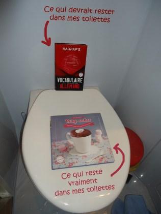 """""""Mug cakes au micro-ondes pour gourmands pressés"""", E. Delprat-Alvares, ed. Larousse"""