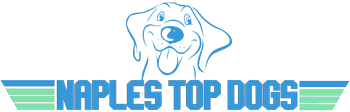 Naples Top Dogs
