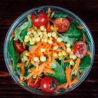 Vida Saudável | Diário 3 - Primeira semana com 600 calorias por dia!