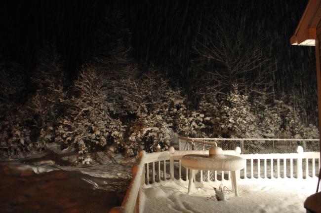 Spring Snowstorm