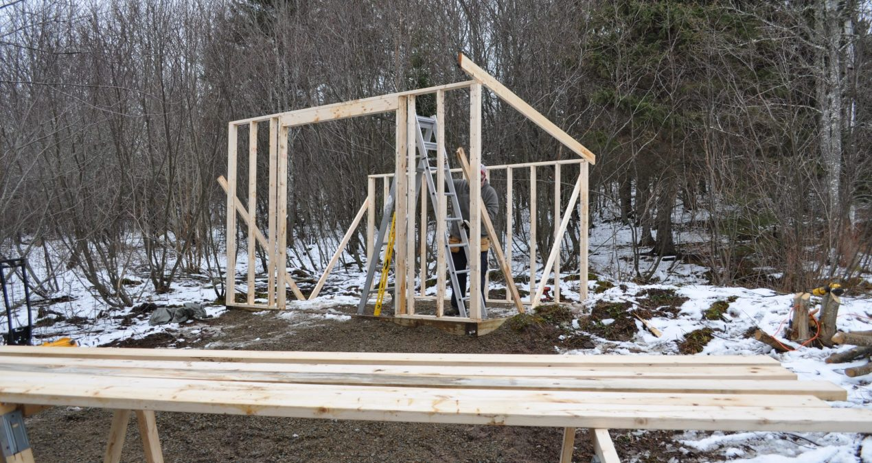 More pictures of today's shed construction progress