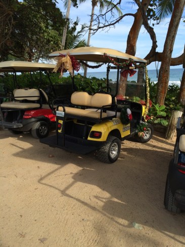 Pimped out golf cart.