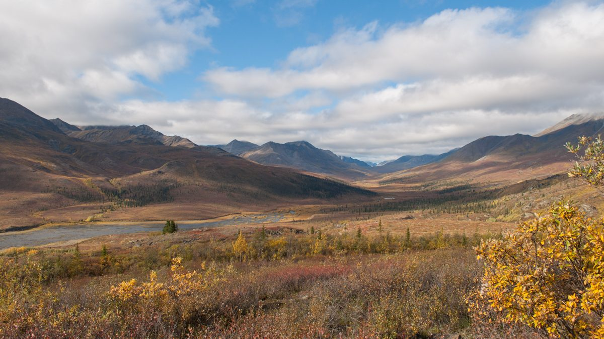 Tombstone Territorial Park in Fall