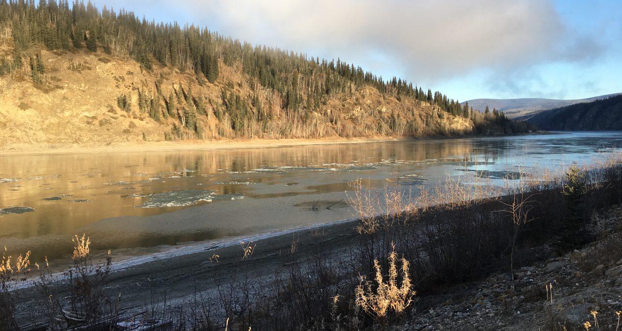 Yukon River is getting slushy!
