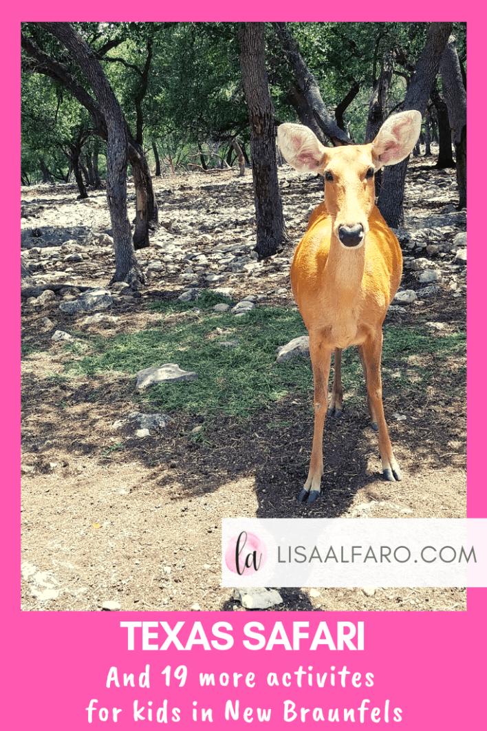 Texas Safari and 19 more activites for kids in New Braunfels #newbraunfels #kids #safari #wildlife #naturalbridgecaverns #thingstodo #activities #kids #toddler