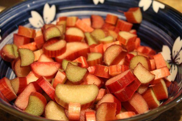 Rhubarb Tart with Walnut Crust1