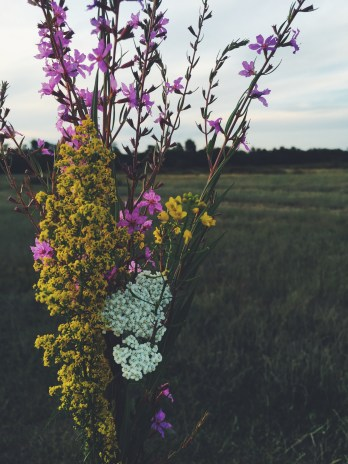Collecting wildflowers for my grandparents.
