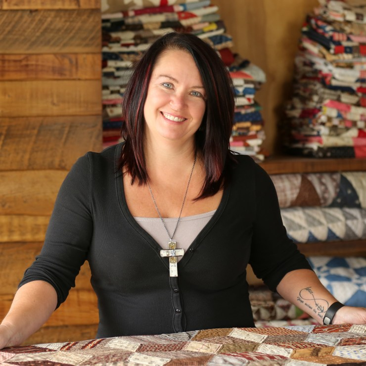 About top US quilting blogger and shop owner, Lisa Bongean