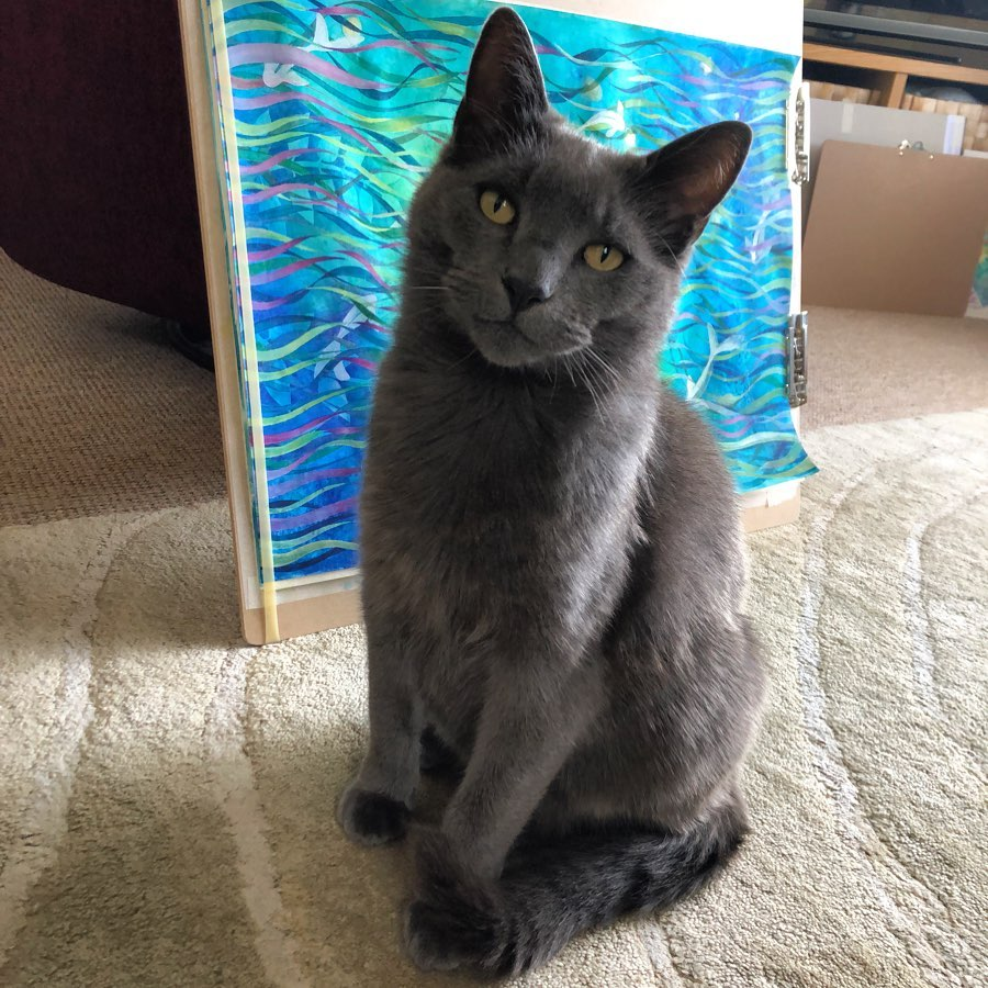 I'm not letting you at the painting until you sort out my second breakfast...    #catsfixation?  @lisa_cat