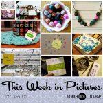 This Week in Pictures: Week 10 2017, Winter is Back