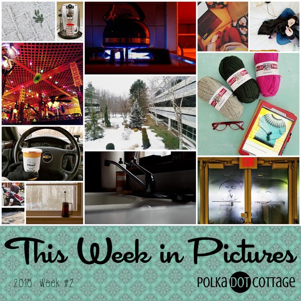 This Week in Pictures, 2018 Week 2