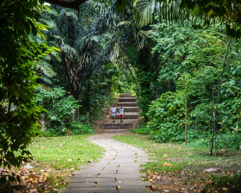 Stairs To Mount Faber