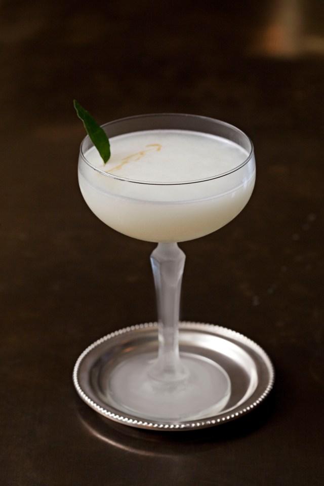 Quinine Sour