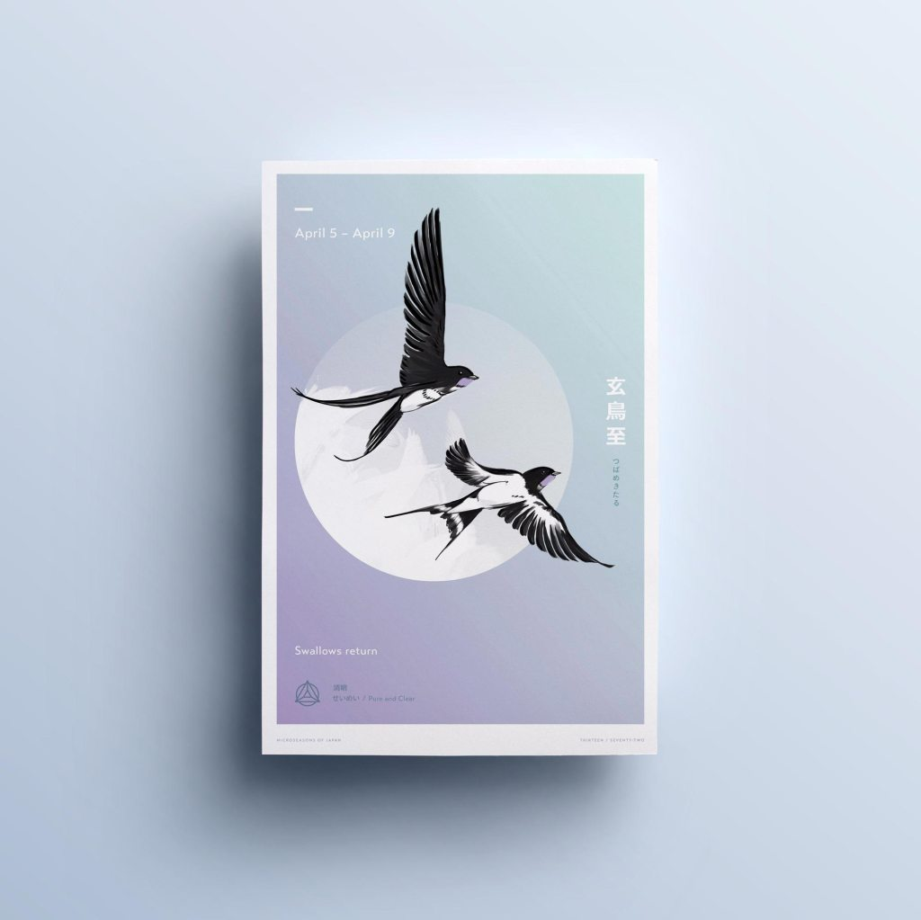 Swallows Return, poster design by Lisa Furze