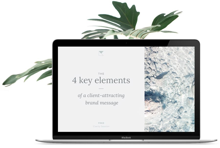 Book a free clarity session and learn the 4 key elements you need to write a brand message that your ideal clients find irresistible.