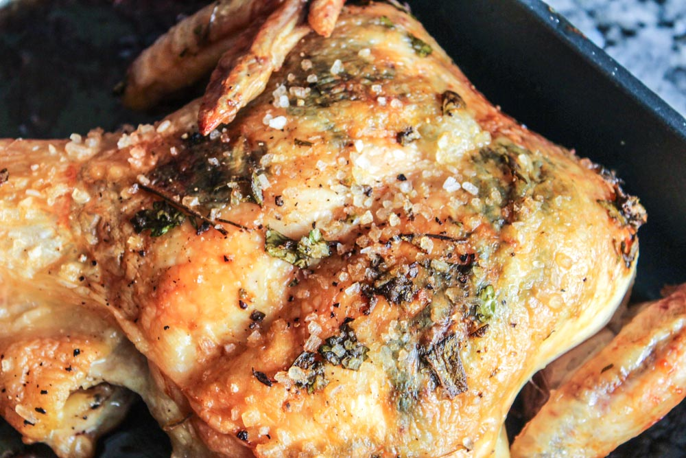 herbed butterflied chicken