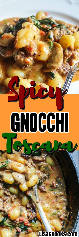 Gnocchi in a Spicy Cream Sauce