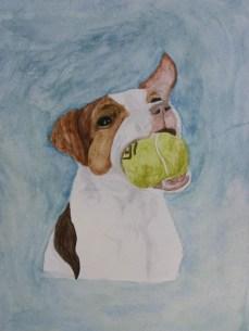 Porkchop with Ball