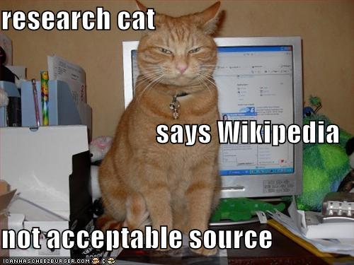 research-cat-lolcat