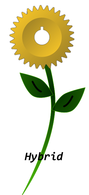 hybrid symbol