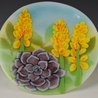 Succulents as seen in Simple Pleasures with Lisa Vogt