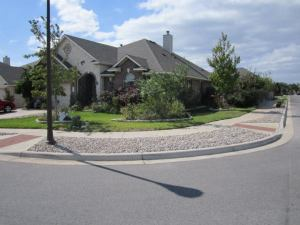 Reduced lawn with Xeriscape beds and river rock nuisance strip.