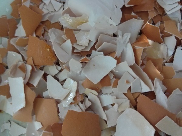 Crushed egg shells, ready to use.