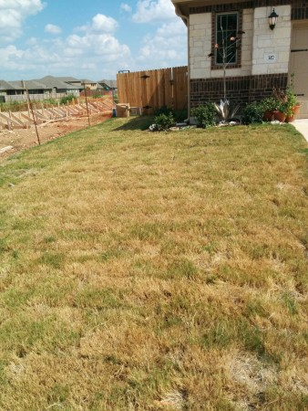 """This is the left side facing my house. Lots of lawn, really dull and soon will have a neighbor to hide from my view, or at the very least """"enhance"""""""