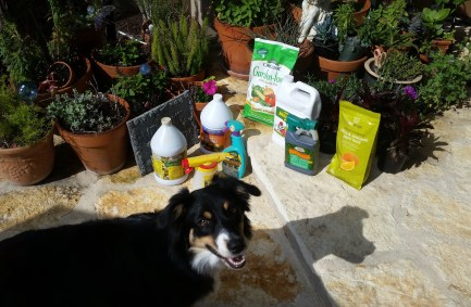 Organic fertilizer and pest control