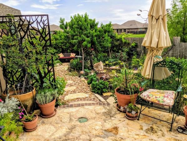 Xeriscape garden, Austin Texas