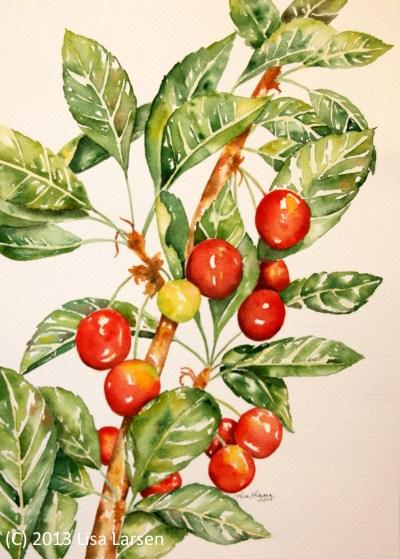 w-cherries