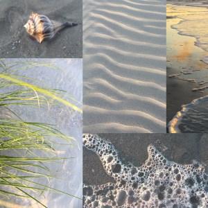Lisa Lounge Explores the Beach
