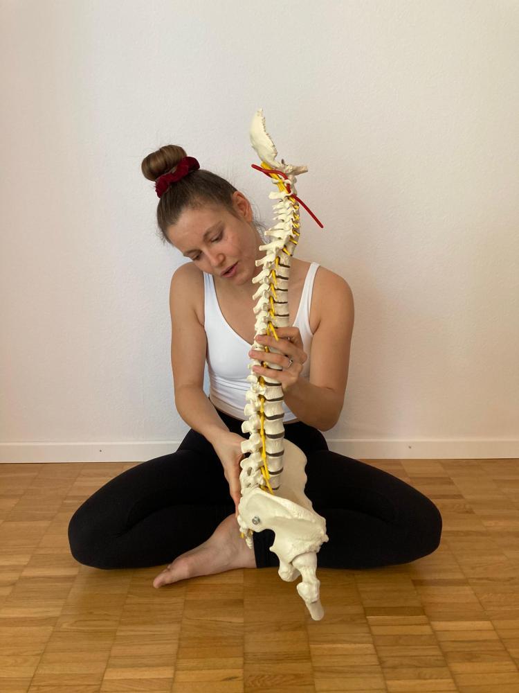 Rücken richtig im Yoga stabilisieren, wie lerne ich das?