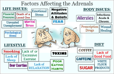 adrenal-fatigue-causes