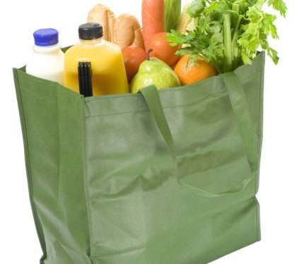 grocery-bag-120508