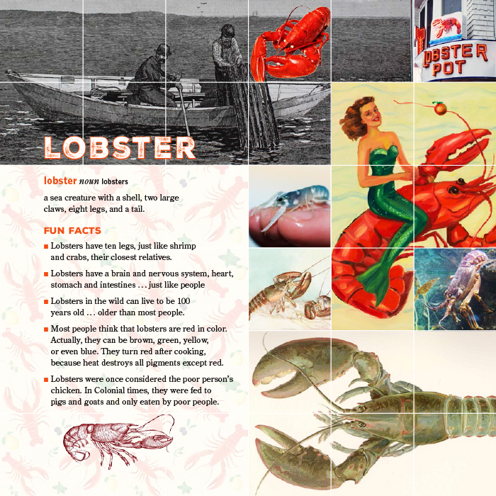 Eve Book Lobster