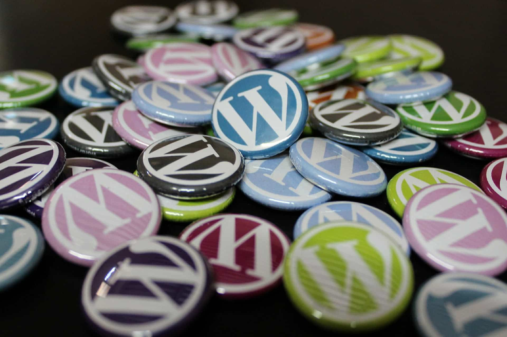 WordPress All In One - First Edition