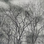 Prints Winter Trees December Etching